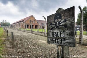 Auschwitz (Holocaust Remembrance and the Leadership Dilemma)